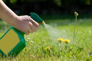 mobile-al-lawn-care-herbicides-spanish-fort-al-lawn-care