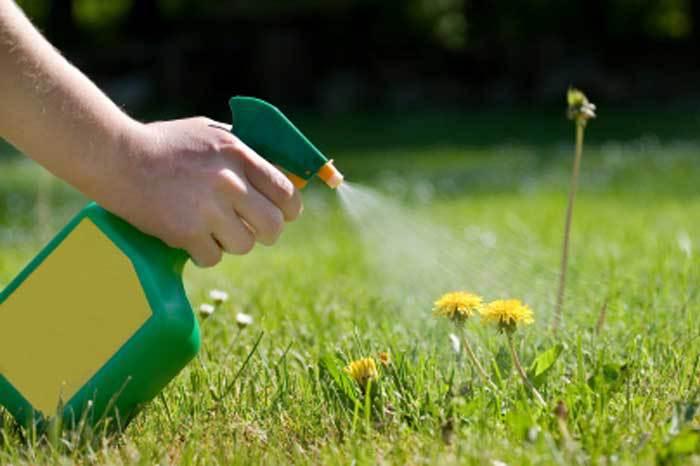 mobile-al-lawn-care-herbicides-spanish-fort-al-lawn-care