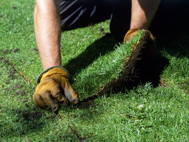 Caring For Your Lawn Year Round Daphne Al Fairhope Al