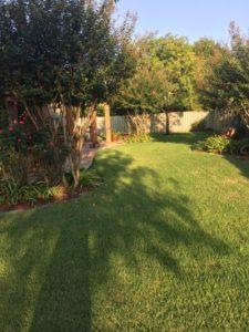 Pre-emergent-lawn-care-daphne-al
